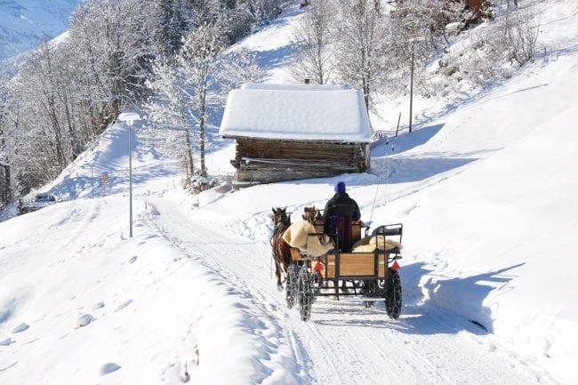 Pferdeschlittenfahrten im Winterurlaub in Radstadt, Salzburger Land